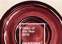 Marsala 205 Pantone Color